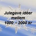 1000 - 2000 kr
