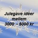 3000 - 5000 kr