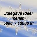 5000 - 10000 kr