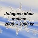 2000 - 3000 kr.